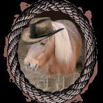 Sheriff Scamper